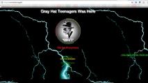 বেসিসের ওয়েবসাইটে মিয়ানমারের হ্যাকারদের হানা